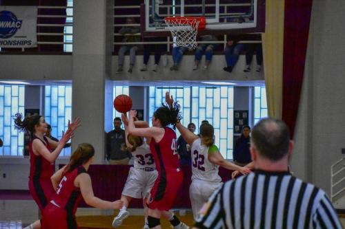 womensbasketball-mitnewcacchampionship-goslin