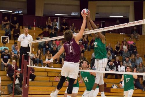 Men's Volleyball - Endicott - Gabriel Irizarry Pares